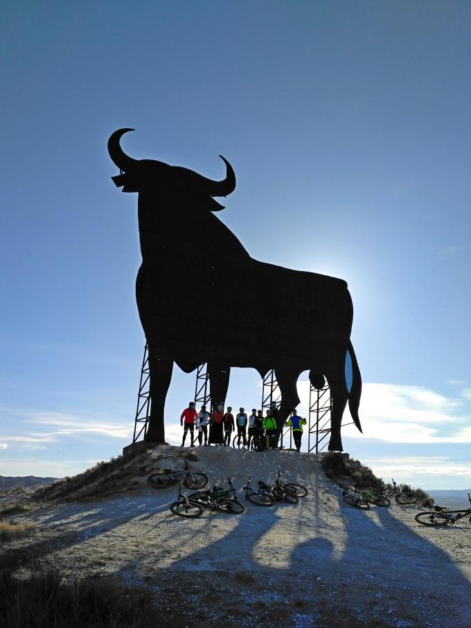 Salidas Carretera y Btt (Pinseque)-(Toro de Alfajarín)